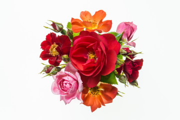 bouquet of colourful roses on white background