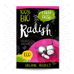 Colorful label in sketch style, food, spices, black background. Radish. Vegetables. Bio, eco, farm, fresh. locally grown. Hand drawn vector illustration.