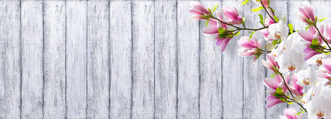 Magnolia with orchid on background of shabby wooden planks