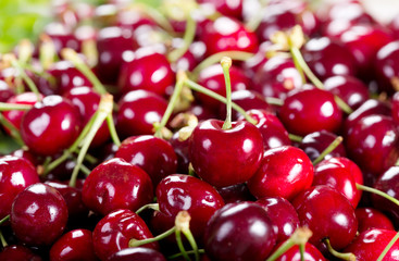 fresh cherries as background