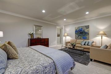 Gray tones bedroom interior with queen bed