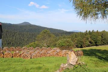 Wandern, Berge, Bayerischer Wald