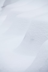 Row of snow-covered cars