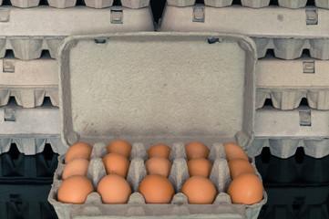 Egg box full of fresh organic chicken eggs