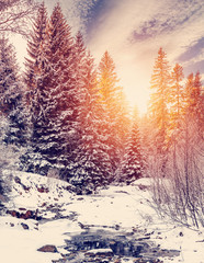 Wonderful winter landscape. snow covered pine tree over the mountain river under sunlight. wonderful, amazing view. christmas holiday concept. instagram filter. creative image