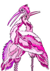 love is two beautiful pink birds, he and she