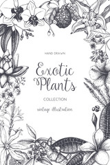Exotic plants background. Vector tropical flowers design. Hand drawn exotic plants sketch. Vintage flowers and leafs frame. Natural template with tropical colorful plants isolated on white.