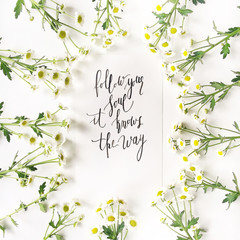 """Quote """"Follow your soul it knows the way"""" written in calligraphic style on paper with chamomile on white. Flat lay, top view"""