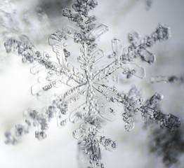 The Microscopic World. Snowflake under microscope.