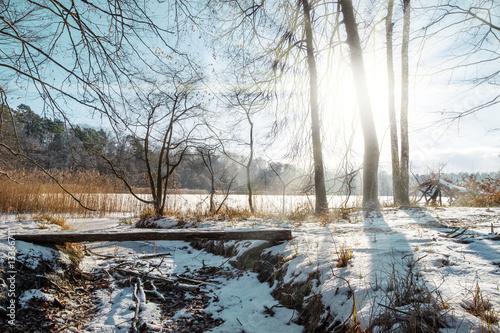 die sonne scheint im winter mitten in einen naturschutzgebiet im land brandenburg deutschland. Black Bedroom Furniture Sets. Home Design Ideas