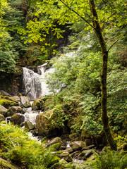 Small waterfall at Kilarney national park, muckross, Republic of Ireland