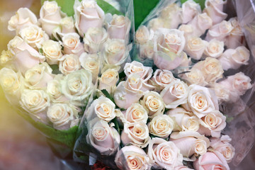 Fresh roses at floral shop, closeup