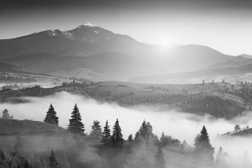 Carpathian light. Black and white