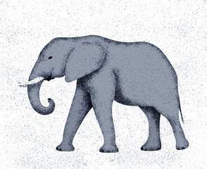 Elephant with grain texture
