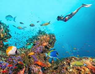 Foto op Aluminium Duiken Beautiful coral reef with young freediver woman