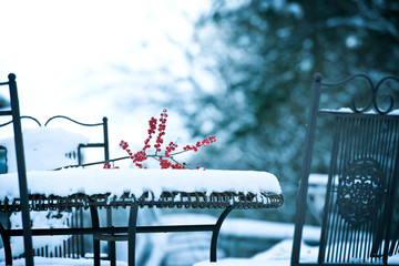 winterliche Stimmung im Garten