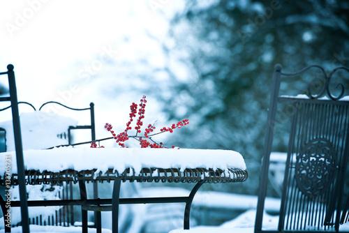 winterliche stimmung im garten stockfotos und. Black Bedroom Furniture Sets. Home Design Ideas