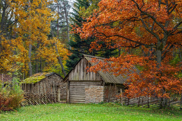 vintage, rustic house in the autumn mist. View of the patio of farm. The open air Museum in Tallinn. Historical landmark of Estonia. The old medieval architecture of Estonia.