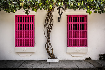 Pink shutters on two windows in Cartagena, Colombia.