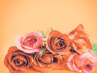 Roses on Valentine's Day , Background