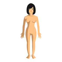 woman body anatomy illustration design