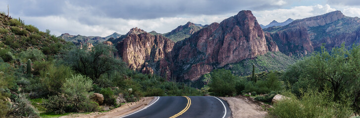 Beautiful Bush Highway Arizona, USA