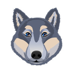 The head of a wolf. Logo, emblem, mascot. Vector illustration.