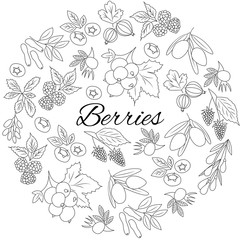 Hand drawn outline berries isolated. Round set.