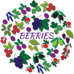 Hand drawn outline berries isolated. Round colorful set.