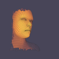 Head of the Person from a 3d Grid. View of Human Head.