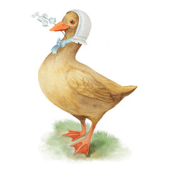 Vintage aquarelle watercolor duck