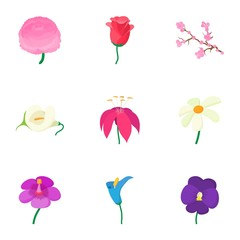 Kinds of flowers icons set, cartoon style