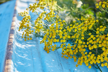 Yellow flowers and blue boat
