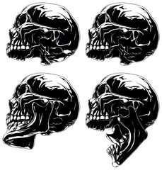 Detailed graphic black and white skull in profile projection set