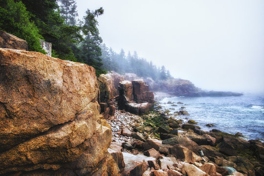 Acadia National Park in Maine. Coastline, stony beaches and pine forests.