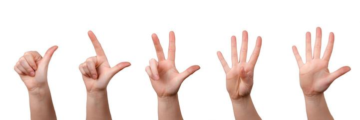 Mit Fingern zählen, Hände zeigen 1-5