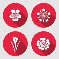 Flower set. Primula, viola, blue poppy, Crocus, Saffron. Spring flowers. Floral symbols with leaves. Color icons. May be used in cuisine. Vector isolated.