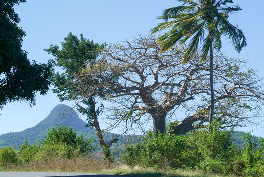 Landscape with mount Choungui on the island of Mayotte