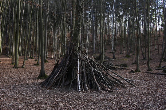 Shelter in forest.