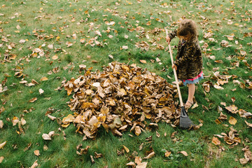 Young girl collecting autumnal leaves