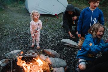Family by campfire at dusk, National Park, Alaska, North America