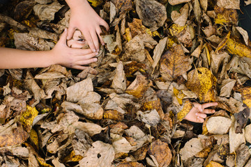 Children's hands buried in autumnal leaves