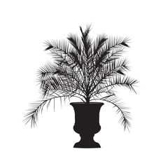 Silhouette of a date palm tree in a vase