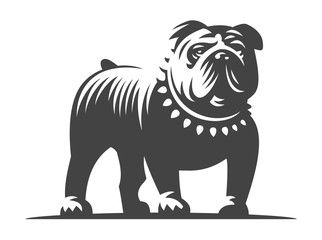 Bulldog vector illustration on white background