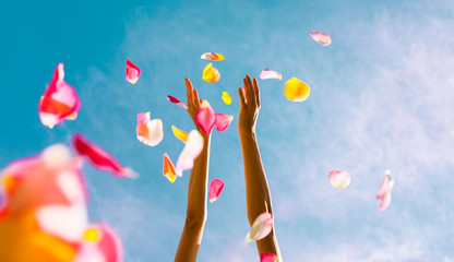 Hand throwing rose pedals. Party and celebration concept.