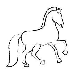 horse animal icon over white background. vector illustration