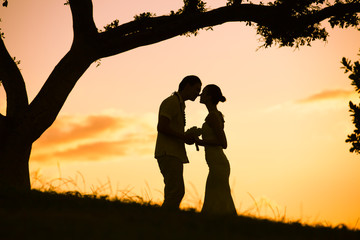 Just married couple kissing under a tree at sunset.