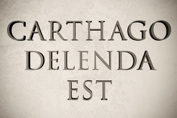 """Latin quote """"Carthago delenda est"""" on stone background, 3d illustration - meaning """"Carthage is to be destroyed"""""""