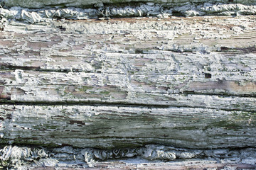 background fragment of the old cracked log wall