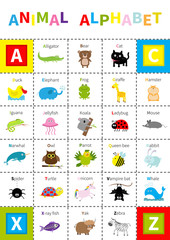 Animal zoo alphabet poster. Cute cartoon character set. Isolated. White background Flat design. Baby children education. Alligator, bear cat duck, elephant frog giraffe hamster iguana
